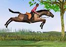İngiliz Atı